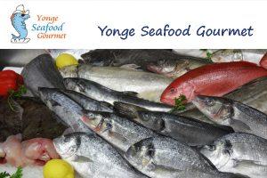 Yonge Seafood Gourmet Toronto