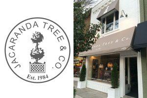 Jacaranda Tree & Co