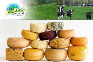 Gunn's Hill Cheese