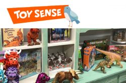 Toy Sense Thunder Bay